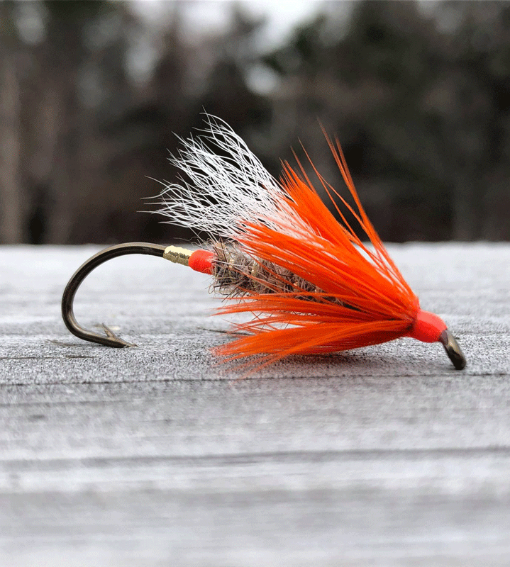Salmon Hook For Salmon Fishing